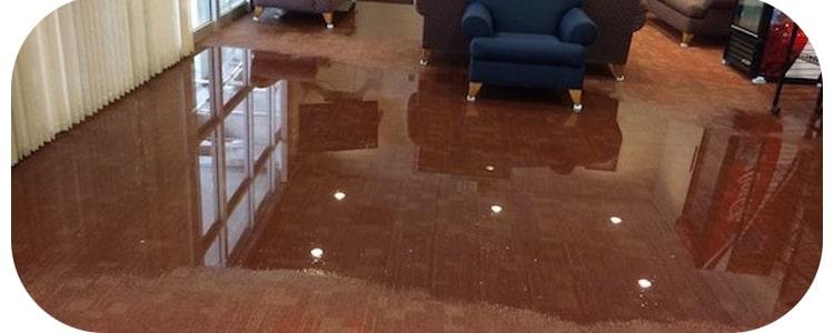 Expert Flood Damage Restoration Balwyn